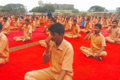 international yoga day 2016 shaheen pu college